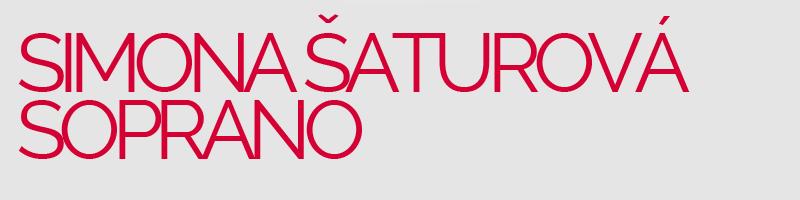 Logo-SaturovaRaleway-reg2 grey red