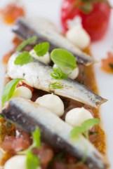 Gourmet Spanish sardines, sourdough toast, tomato, herbs, mayonnaise