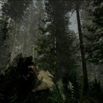 TheForest_Scale