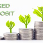Fixed Deposit Schemes: The Best Investment Options For a Secondary Monthly Income