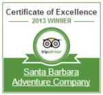trip advisor award of excellence