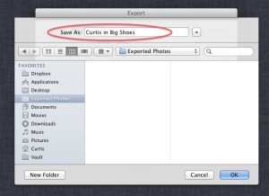 """iPhoto Export """"Save As"""" Window"""