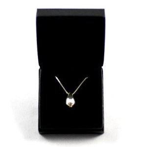 Ashes Memorial Jewellery mini teardrop
