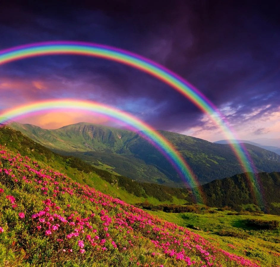 How Many Colors Are There In A Rainbow  Why Don t You See All Colors
