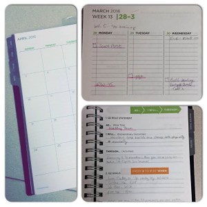 I love this planner because it has worksheets to help develop roles and goals as well as master tasks.