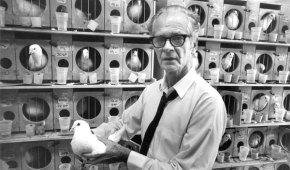"B.F. Skinner to Abraham Maslow: ""I have had many peak experiences"""