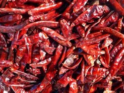 how to dry chile peppers