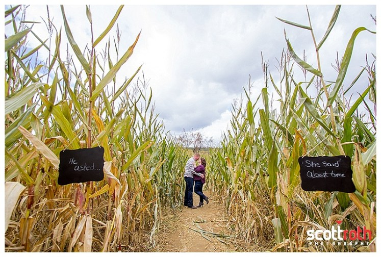 hackettstown-farm-engagement-photos-8846.jpg
