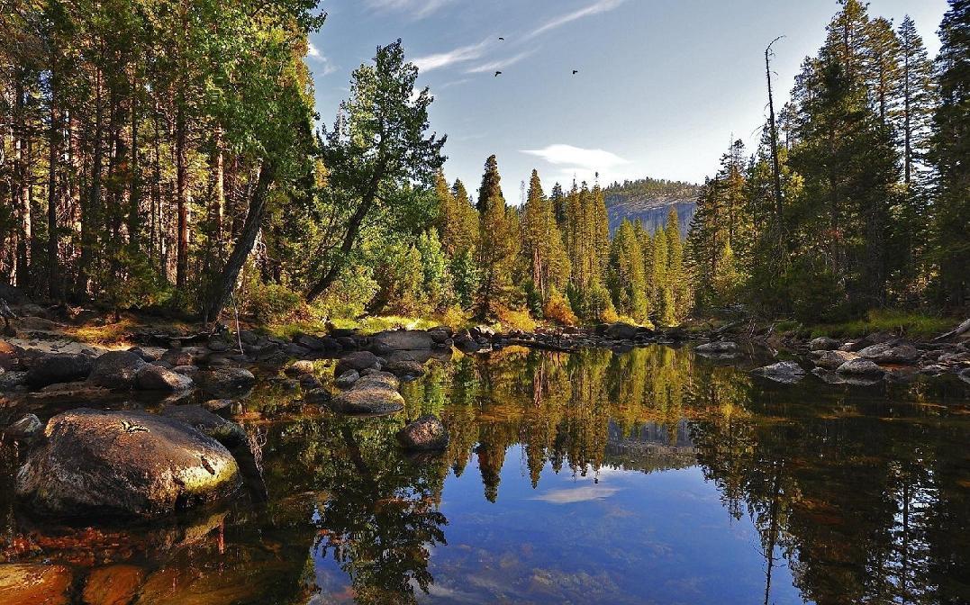 Beautiful Lake Reflection Screensaver