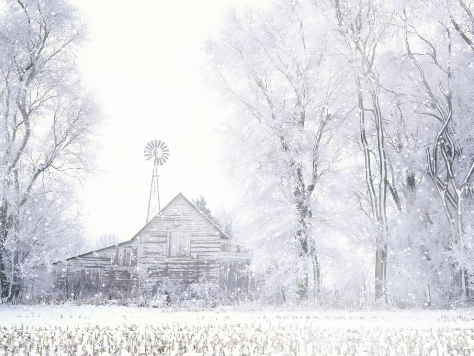 Rain And Snow Screensaver