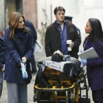 JON HUERTAS, STANA KATIC, RICCARDO LEBRON, NATHAN FILLION, TAMALA JONES