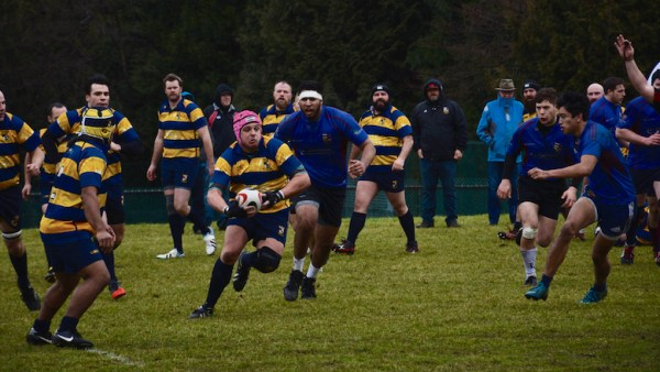 Josh Knight of Scribes RFC carries the ball in the loose against United RC