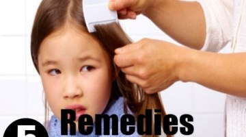 5 Remedies For Lice