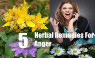 5 Effective Herbal Remedies For Anger