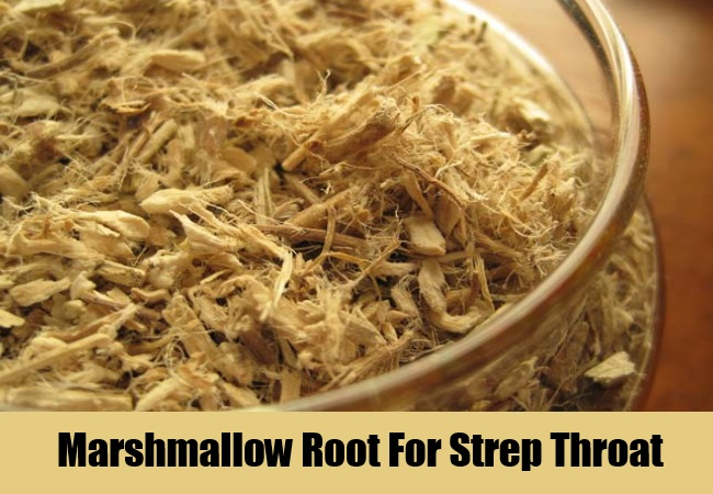 Marshmallow Root For Strep Throat