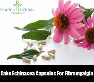how to take echinacea goldenseal tincture