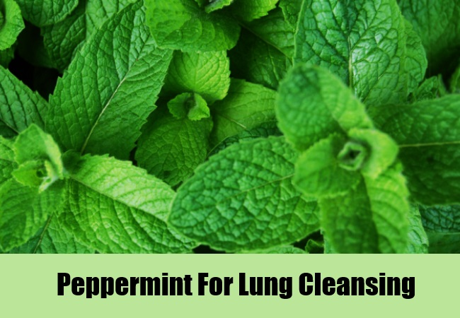 Peppermint For Lung Cleansing