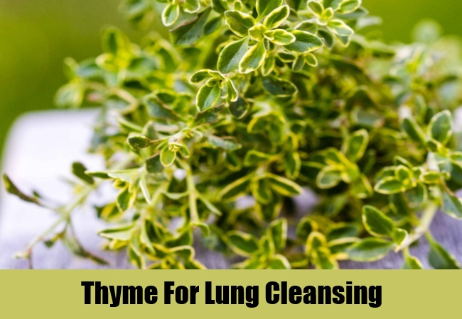 Thyme For Lung Cleansing