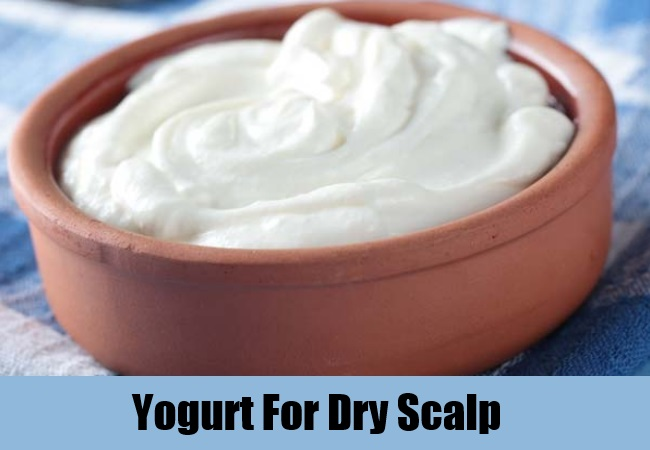 Yogurt For Dry Scalp