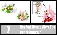 7 Top Herbal Remedies For Lung Cancer