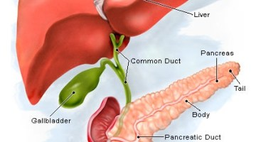 Natural Treatments for Pancreatitis