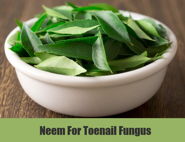 Neem For Toenail Fungus