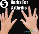 5 Herbs For Arthritis