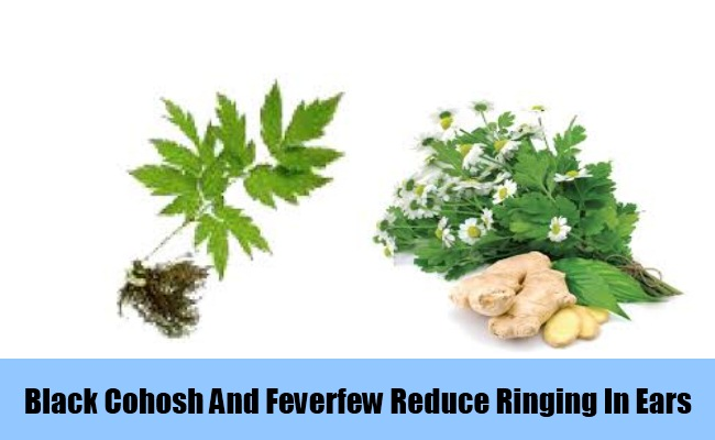 Black Cohosh And Feverfew