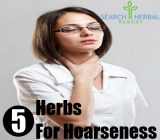 5 Herbs For Hoarseness