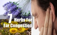 7 Herbs For Ear Congestion