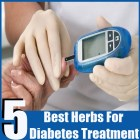 5 Best Herbs For Diabetes Treatment