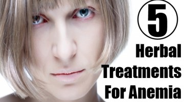 Herbal Treatments For Anemia