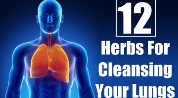 Herbs For Cleansing Your Lungs