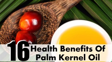 Health Benefits Of Palm Kernel Oil