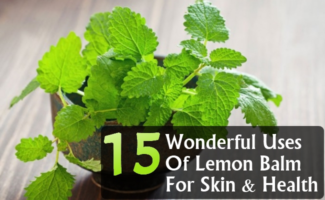 Wonderful Uses Of Lemon Balm For Skin And Health