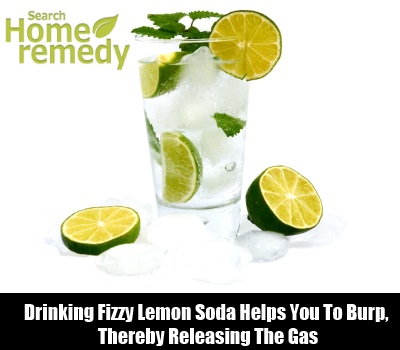 Fizzy Lemon Soda