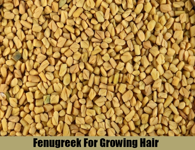 Fenugreek For Growing Hair
