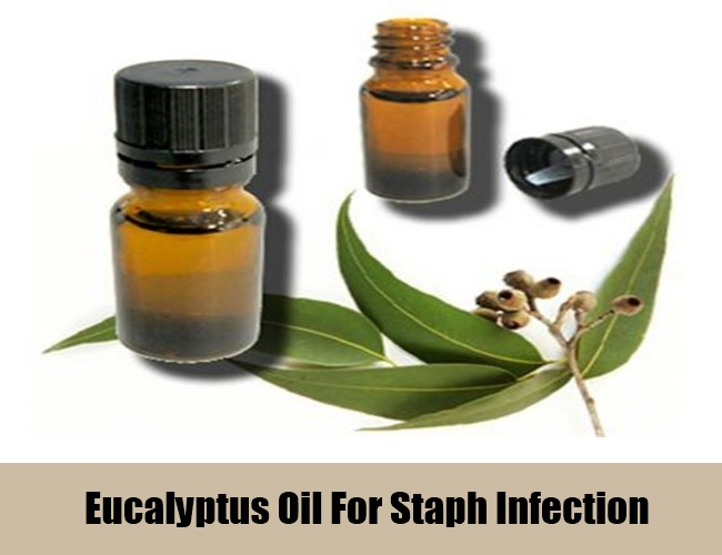 Eucalyptus Oil For Staph Infection