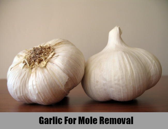 Garlic For Mole Removal