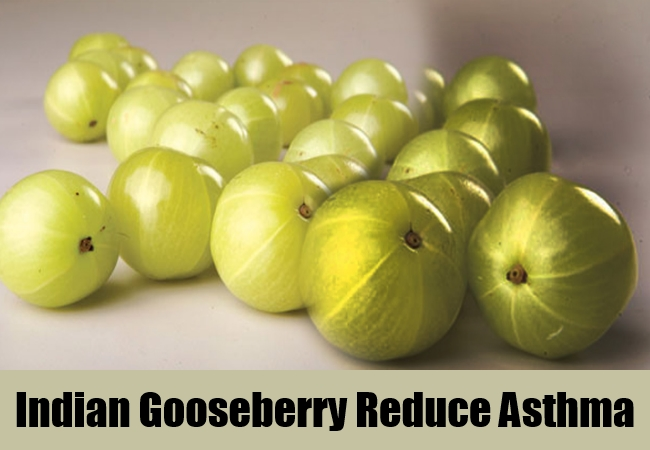 Indian Gooseberry Reduce Asthma