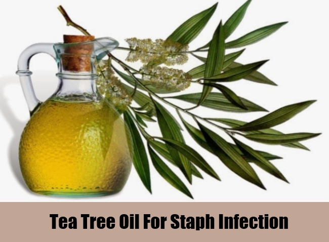 Tea Tree Oil For Staph Infection