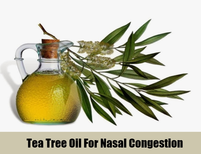 Tea Tree Oil For Nasal Congestion