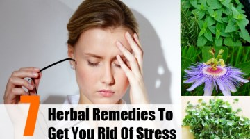 Herbal Remedies To Get You Rid Of Stress