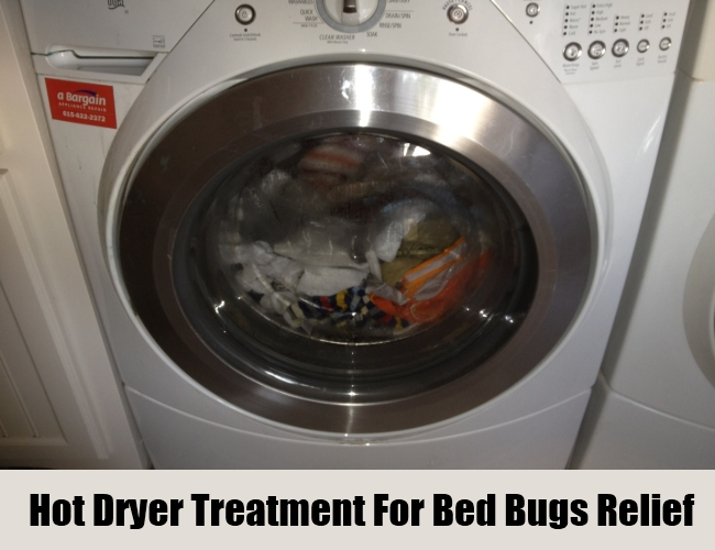 Hot Dryer Treatment For Bed Bugs Relief