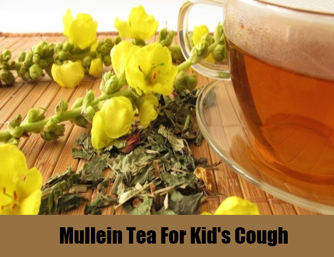 Mullein Tea For Kid's Cough