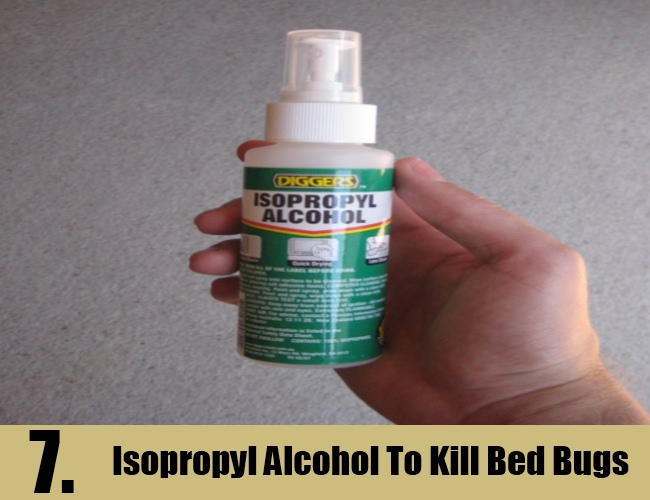 Isopropyl Alcohol To Kill Bed Bugs