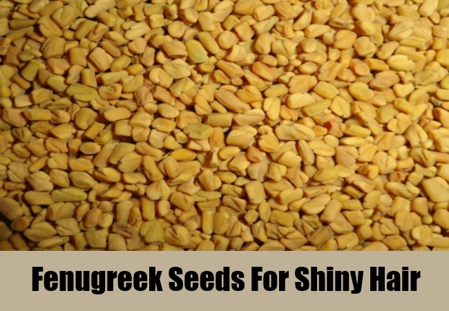 Fenugreek Seeds For Shiny Hair