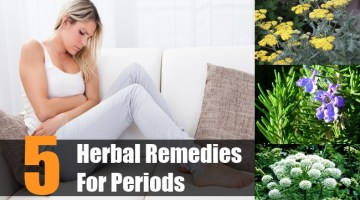 Herbal Remedies For Periods