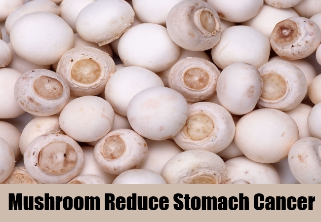 Mushroom Reduce Stomach Cancer