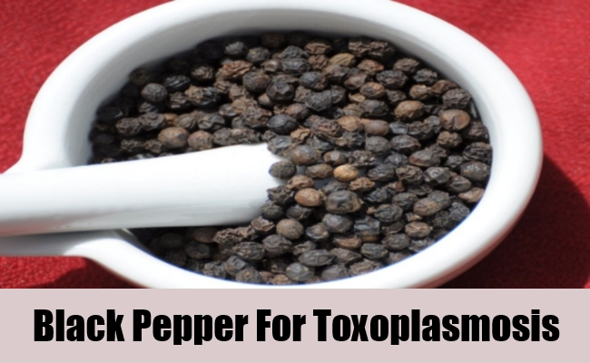 Black Pepper For Toxoplasmosis